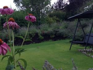 Unser Versteck hinter Blumen und Lavendel...