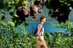Das Weindorf Kaltern am See - ein schönes Wandergebiet